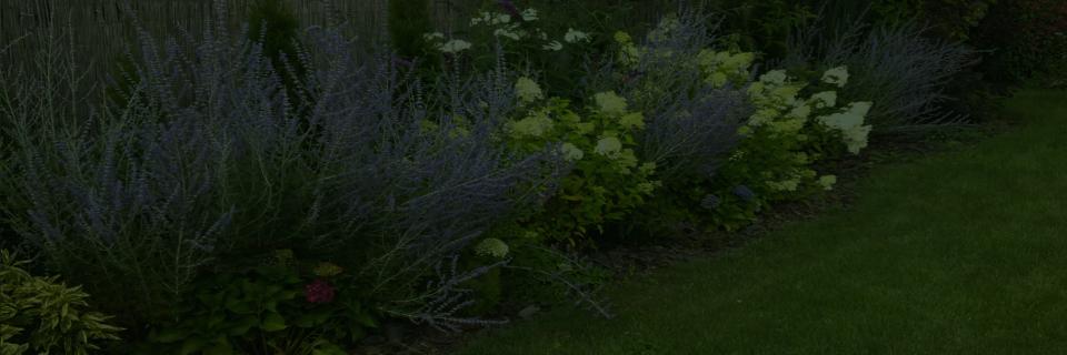 Podejmujemy się projektowania i aranżacji całych ogrodów klientów